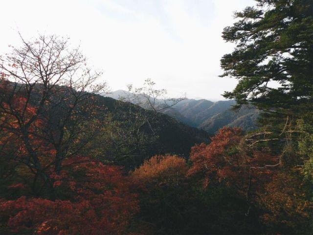 Foto 21-11-16 08 44 14